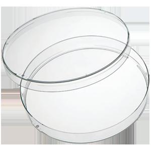 Petri dhishi