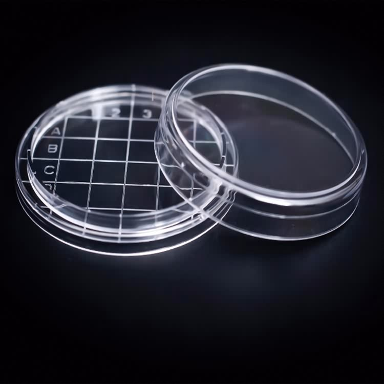 Disposable sterile laboratory equipment 65mm petri dish with count