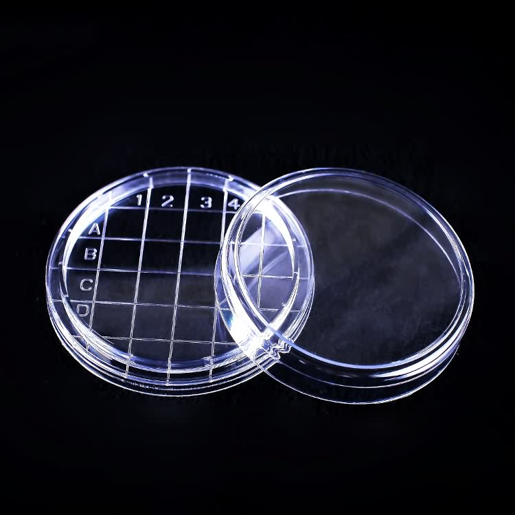 High Quality Laboratory Different Size Petri Dish with high quality additive