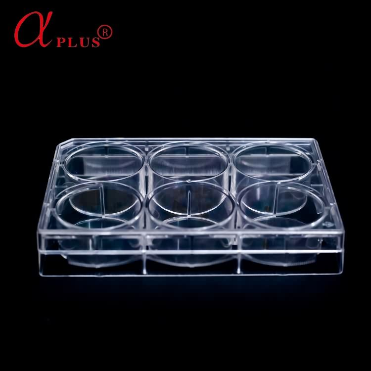 Medical lab plastic disposable sterile 6 wells cell culture plate
