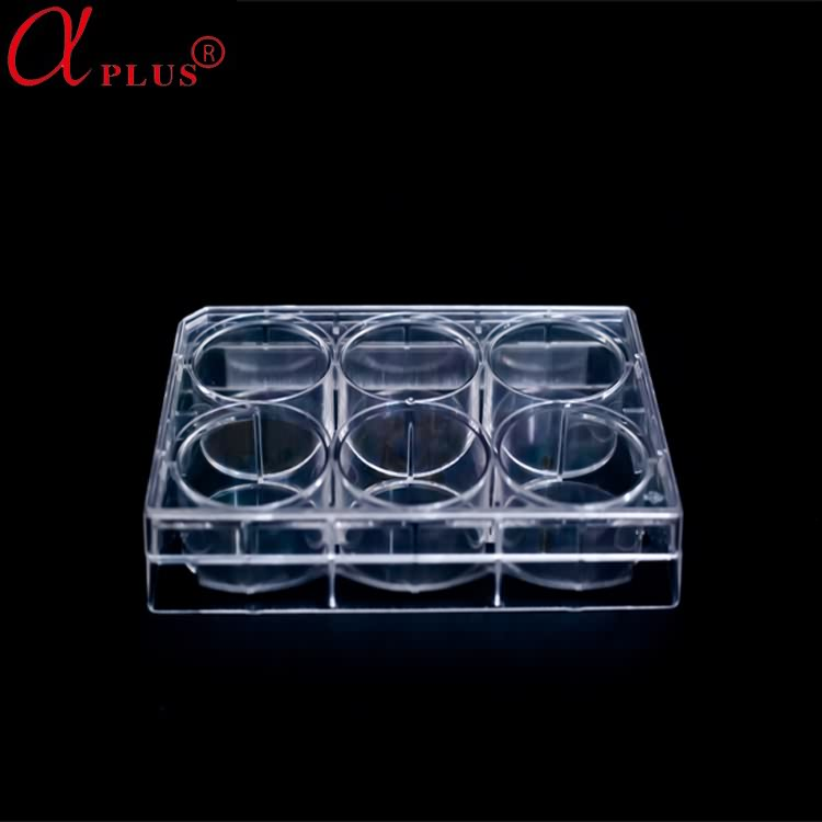 AMA lab consumable 6 well cell culture plate