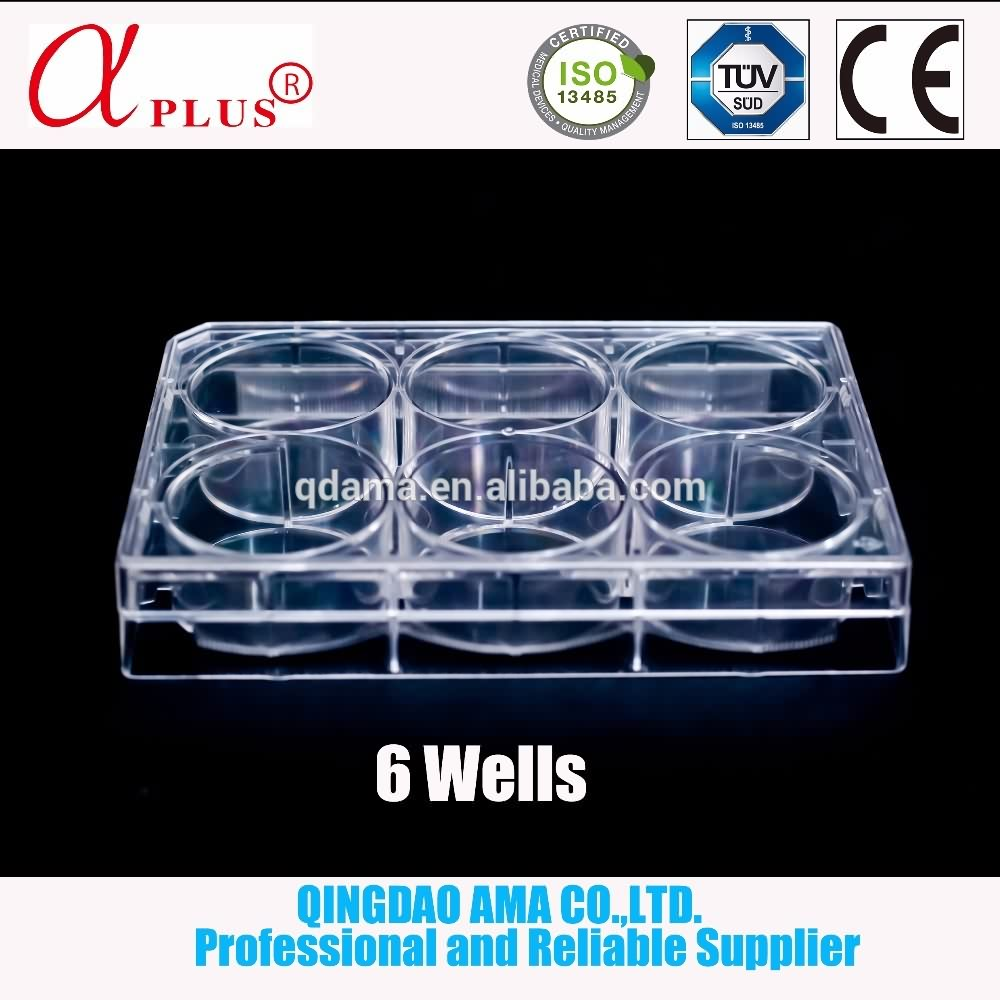 disposable 96 Well Cell Culture Plate