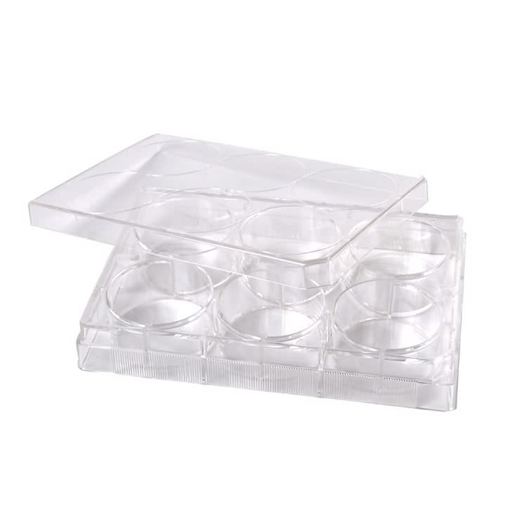 Lab Medical plastik resik 6 uga Produsèn plate budaya sel