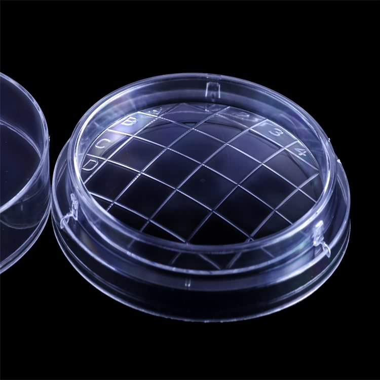 Hot Sale High Quality Disposable Plastic 65mm Petri Dish