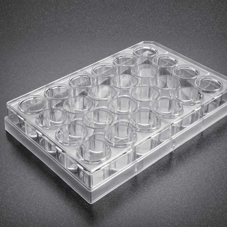 AMA plastic ps 24 well cell tissue culture plate