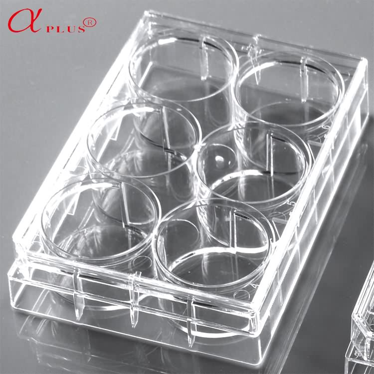 Medical lab plastic disposable 24 well tissue cell culture plate