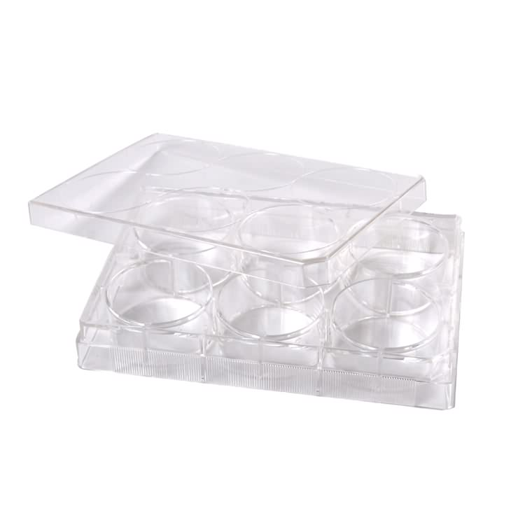 Medical lab plastic sterile 6 well tissue cell culture plate manufacturer
