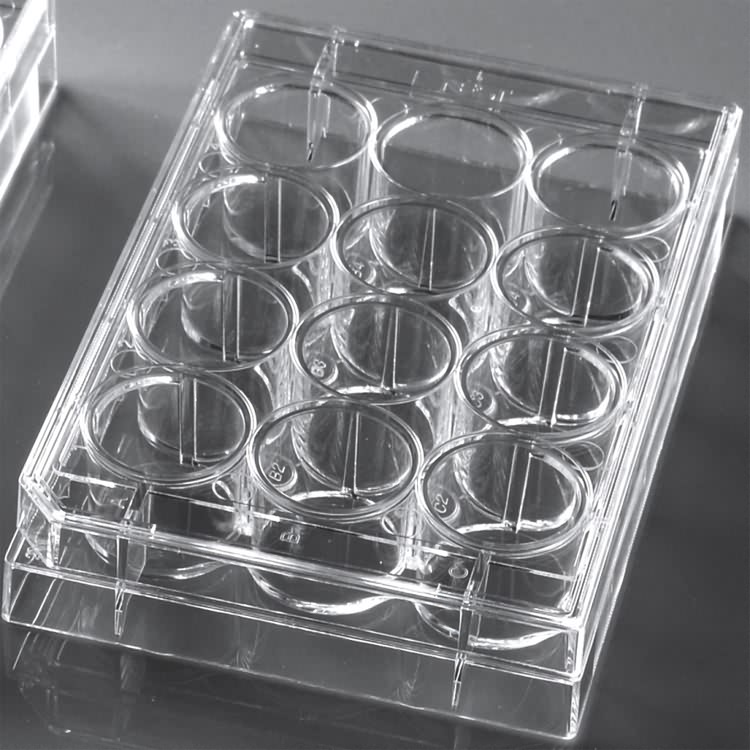 medical disposable 12 well plastic cell culture plate
