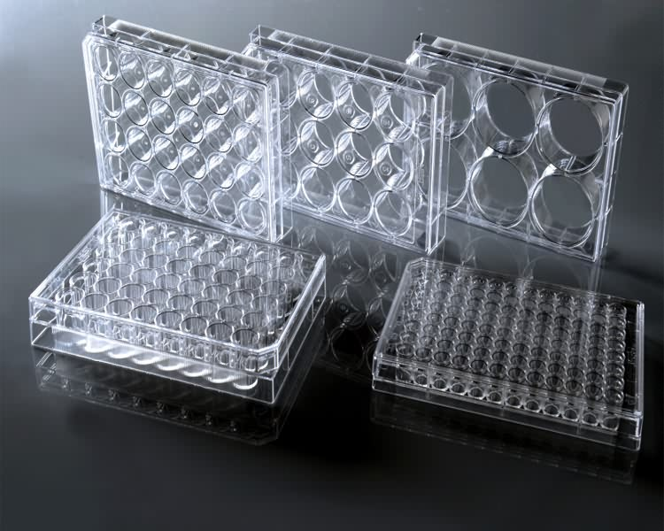 Medical disposable sterile 96 wells cell tissue culture plate