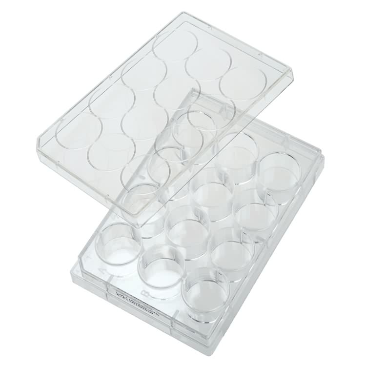 12 wells plastic disposable sterile cell culture plate