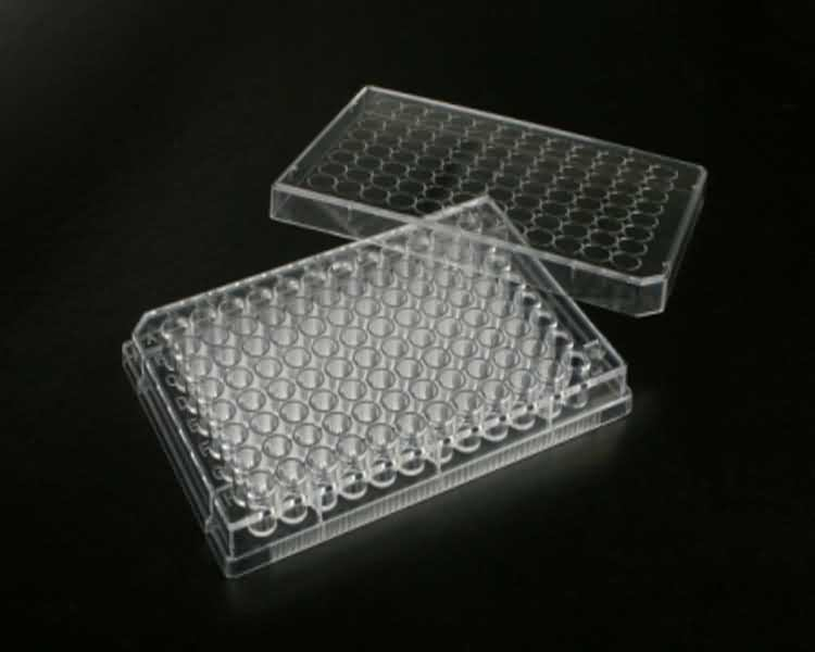 Chinese Clear Plastic 96 Well Cell Culture Plate Tissue Plate