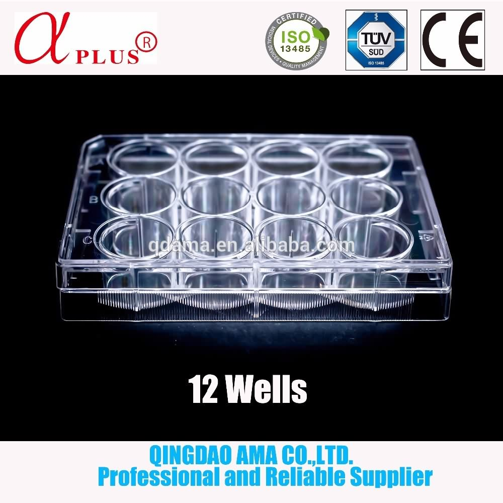 AMA 24 well tissue culture plate